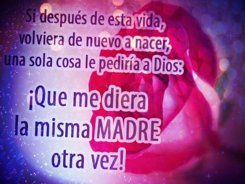 Frases Bonitas De Amor Para Dedicar A Una Madre